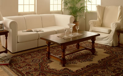 Milwaukee and Chicago Professional Carpet Cleaning and Rug Cleaning Specialists